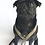 Thumbnail: Beaufort Dog Lead