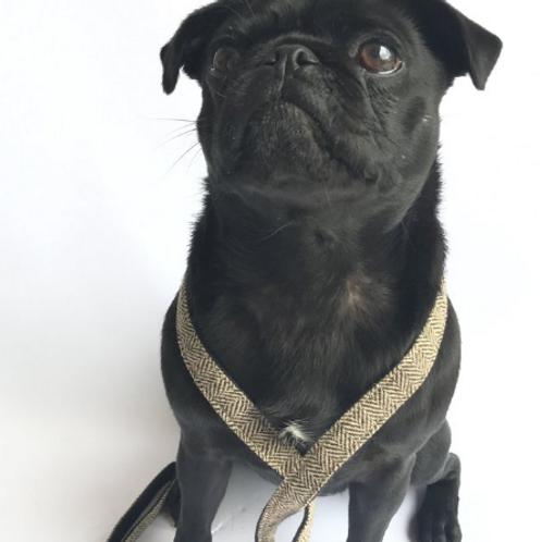 Beaufort Dog Lead