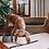 Thumbnail: Long Eared Ceramic Dog Bowl