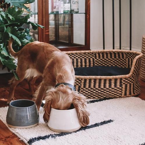 Long Eared Ceramic Dog Bowl