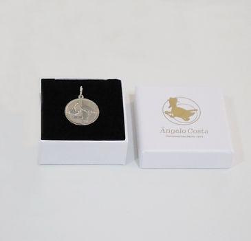 Medalha Nascimento.JPG