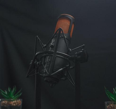 black and brown crooner microphone_edited.jpg