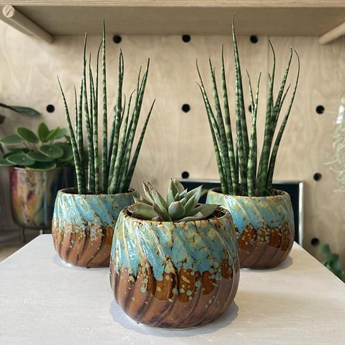 Small retro plant pot