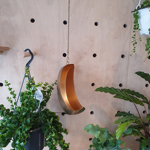 Hanging Moon Pot