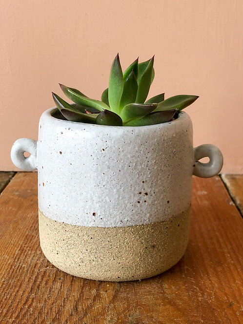Shopaseed Small plant pot with handles