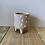 Thumbnail: Polkadot spotty Plant Pot 8x8cm