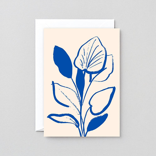Lily Study Card