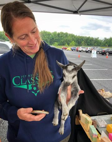 baby goat img.jpg