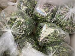 micro green bags img