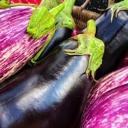 eggplant img
