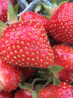 strawberry close upimg