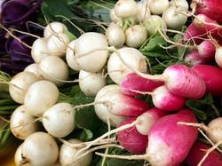 radishes salad turnips img