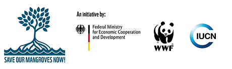 SOMN w initiative's partner logos.png