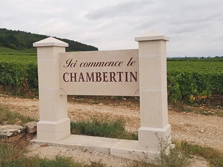 Dégustation : Soirée Bourgogne chez les Epicurvins