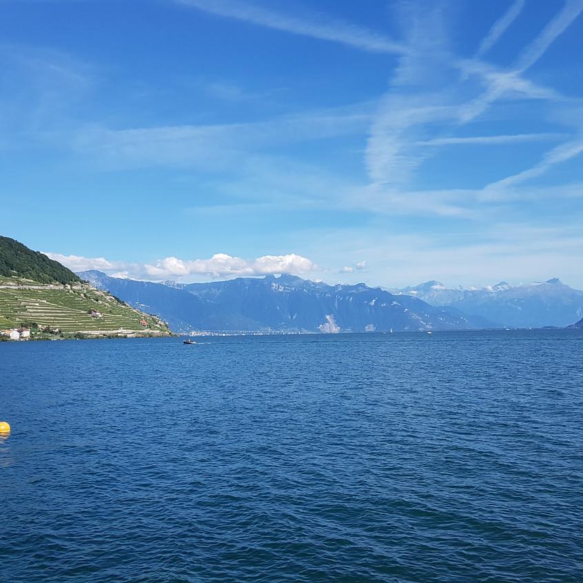 Le Dézaley, lac et Alpes.