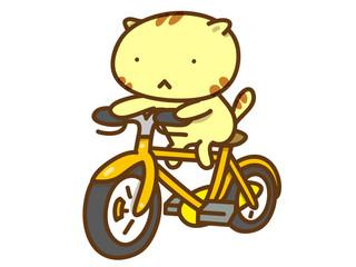 自転車の保険  2020年8月
