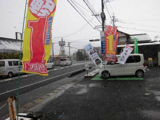雪の展示会 鹿島自動車センターにの軽自動車の新車が月々1万円リース展示会~ダイハツといっしょに~