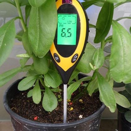 medir-ph-das-plantas.jpg