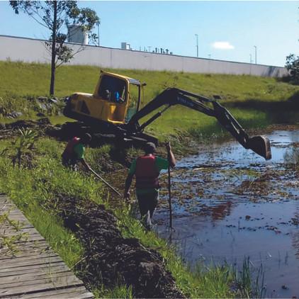 Limpeza lago01.jpg