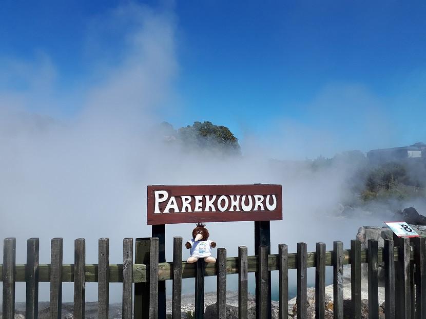 Parekohuru Mineral Cooking Pool
