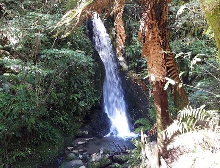 Waterfall McLaren Park