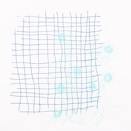 'Trellis and Passion Flower' Screenprint (Blue on White)