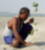 Jadav Payeng.jpg