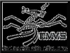Logo_CVVS_2021_v6 final.png