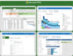Microsoft PPM