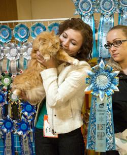 Best HHP in St.Peterburg 21.12.2013