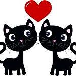 15238566-Две-кошки-в-любви.jpg