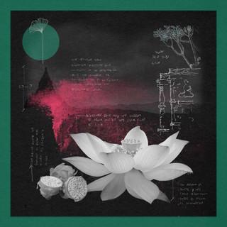 Cover para 'Stay' [SPARROW & BARBOSSA]