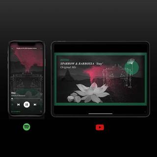 Spotify canvas + cover animado para 'Stay'