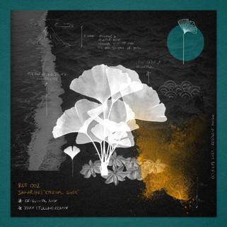 Cover para 'Eternal Roots' [SAFAR FR]