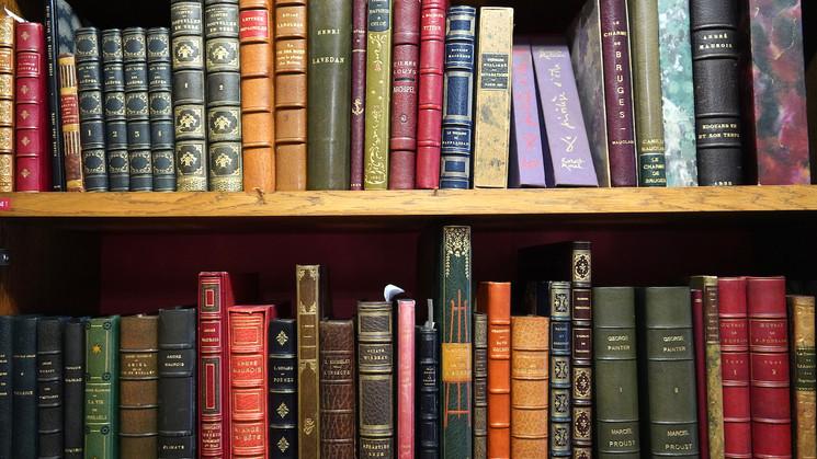 librairie00709.JPG