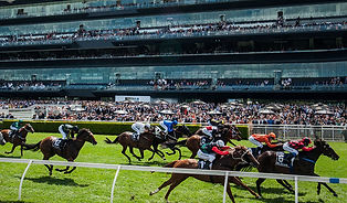 Royal-Randwick-Racecourse.jpg