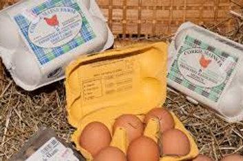 Eggs Free Range Corrie Mains Large