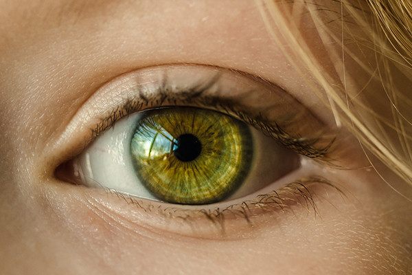 Photo of green eye