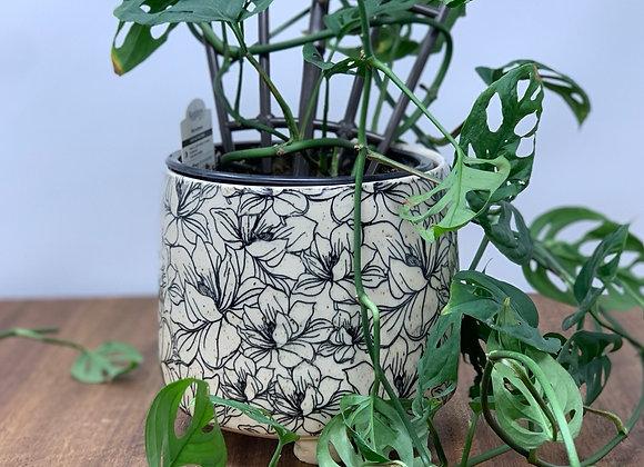 "5"" plant pot floral magnolia"