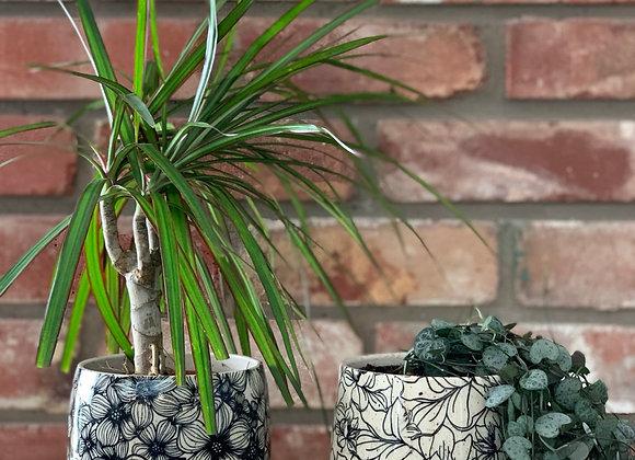 """4"""" plant pot floral"""