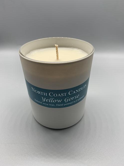 Large yellow Gorse soya candle