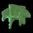 Backmasking Future Logo 2020-1 .png