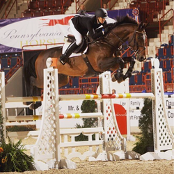 PA National Horse Show
