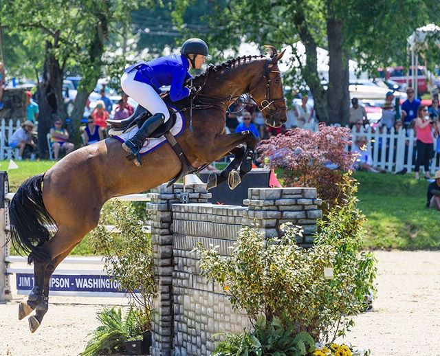 💙De Grande💙CSI4_GP Upperville 💙our 1 year anniversary and his first ever FEI GP!! The sweetest 🐶