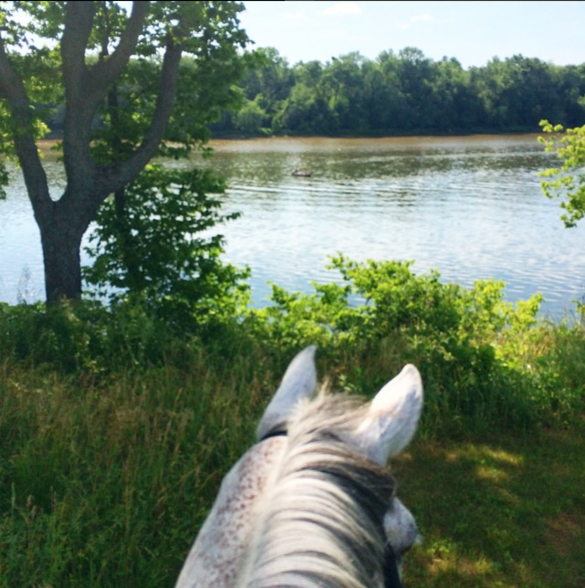 Trail ride in Virginia overlooking the Potomac River