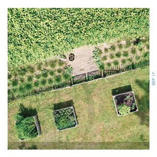 Séances photos dans votre jardin