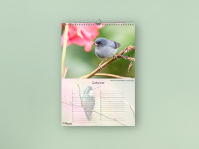 Birthday Calendar - Costa Rica