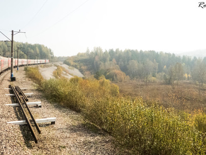 Transmongolia Express