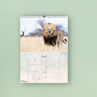 Birthday Calender - African Wildlife