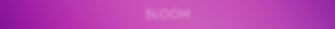 Bloom_logo_colour_background_-_3500px_×_